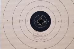 Great-Target-Shoot